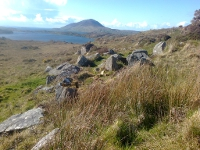 Megalithic Court tomb within the Connemara National Park