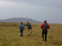 Walking across Roundstone Bog