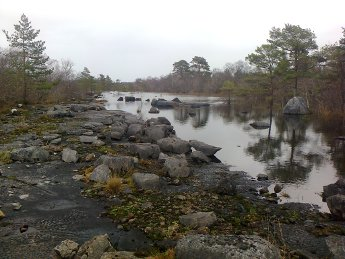 Cong river and limestone pavement