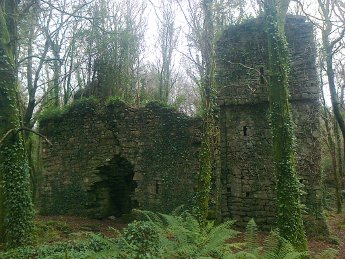 Ruined castle near Cong