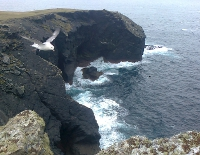Fulmar at Aill na nGall and the South West arm of Inishshark